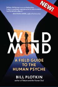 wild mind book